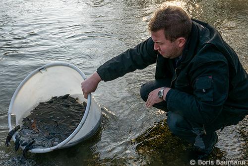 Fischerfreunde Haimhausen AHP 2019 Rutten